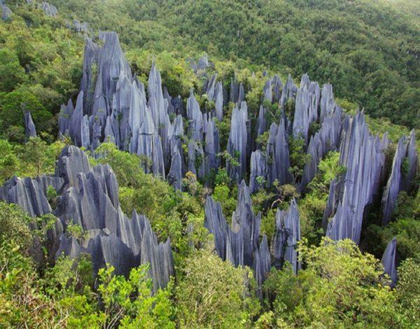 Taman Nasional Gunung Mulu Malaysia