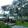 Tempat Wisata Paling Menakjubkan Di Cianjur