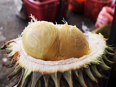 makanan-enak-khas-indonesia3