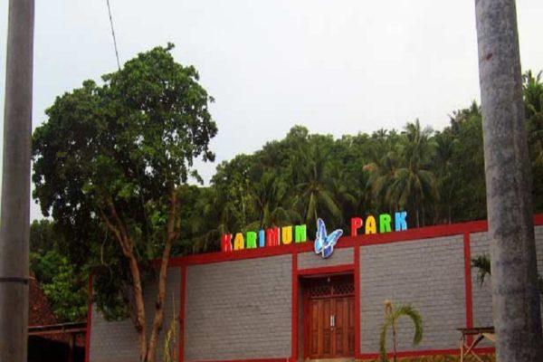 Wisata Butterfly Park Karimunjawa