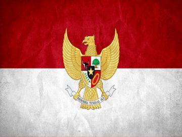 Pria Indonesia Karyanya Sudah Diakui Dunia